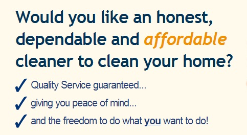 affordale domestic cleaning in Johannesburg