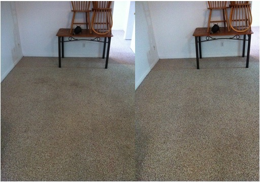 before and after steam carpet cleaning