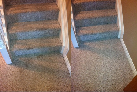 deep carpet cleaning Johannesburg
