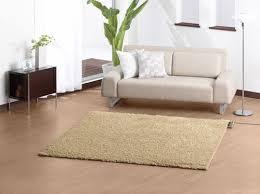 rug cleaned in midrand