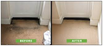 recent stain removal in bedfordview