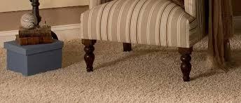 honeydew-carpet-cleaning